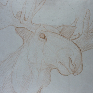 moose-drawing-tn
